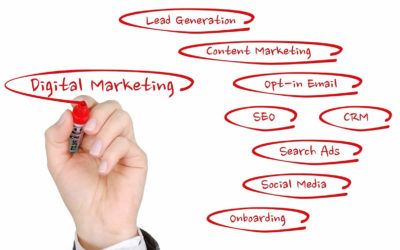 Working with a digital marketing specialist